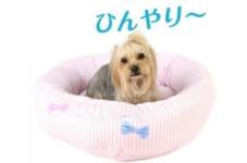 *冷んやり快適な寝心地へ...『クールドリームカドラー』*