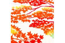 【手拭い】紅葉狩り♪