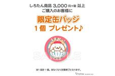 *3/7(土)スタート!アニバーサリー限定缶バッジプレゼント!*