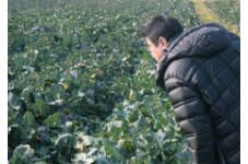 11/1(木)~1/9(水) シェフズ・ジャーニー - 晩秋~初冬 -