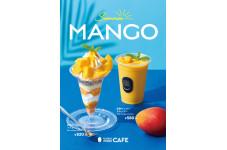 この夏はマンゴーで決まり!
